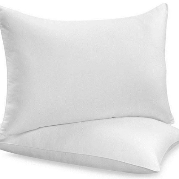 Duck Feather and Down Pair Pillows – Size 48 cm x 74 cm